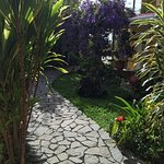 Photo of Hotel Guayabo Lodge