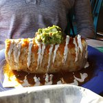 Veggie Burrito al arriba