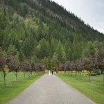 Foto de Bull River Guest Ranch