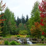 gorgeous gardens in Whistler