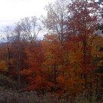 Beautiful fall.