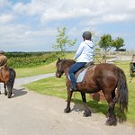 Horse Riding at Stowford Farm Meadows