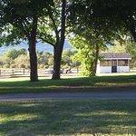 Carleton Motel & Cabins Foto