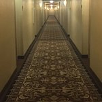 Corridors are spooky and too long