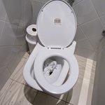 Este el el lindo, moderno y nuevo WC