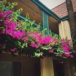 Candy Cane Inn Foto