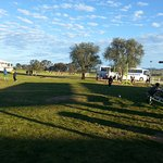 us at the bathurst sheep and cattle drome.