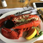 A 1.25 pound lobster