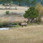 Rams Horn Village Resort Foto