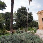 Villa Arditi Picture