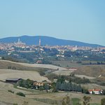 Siena in the background
