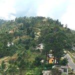 Binsar Eco Resort Foto