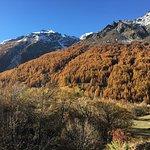 Auberge du Pont de l Alp resmi