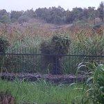 Kiboko Lodge Bild