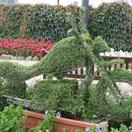 Isle of Man is famous for its motorcycle race--this is a topiary across from the hotel