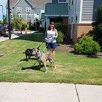 Foto de TownePlace Suites Jacksonville