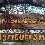 Photo of Il Picchio Verde