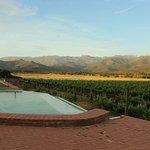 Infinity pool overlooking mountains and vineyard