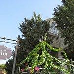 Photo of Casa Di Lolita