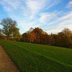 Autumn in Queens Park