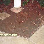 cigarette butts along walkway to room