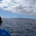 Blue Water Molokini Whale Watch (snorkel trip)