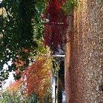 20161101_123656_large.jpg