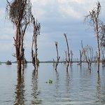 Near Lake Naivasha