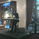 Karl Stelzammer Live Musik im Restaurant