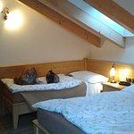 Photo of Hotel Alla Rosa