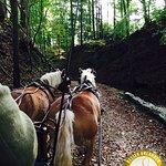 Kutschfahrt mit hoteleigenen Pferden