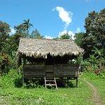 Los ranchos típicos son construidos con materiales obtenidos del Bosque Tropical,