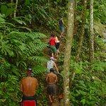 Caminata por la selva camino a la Catarata de Volio !!!