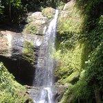 Los bosques y ríos de esta región han sido siempre el hábitat idóneo para los Bribris y Cabécare