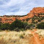 Bear Mountain Trail Foto