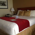 Large kingsize bed. The room had fridge, microwave, desk, storage. Was great.
