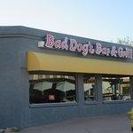 Bad Dog's Bar and Grill, Lake Havasu City, Az
