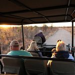Private game drive at Honeyguide