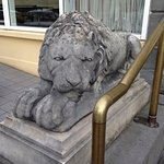 2 beatiful Lions to greet you at the entrance of the Minella