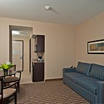 Holiday Inn Express & Suites Morton-Peoria Area Foto
