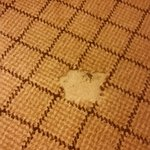 Torn Carpet