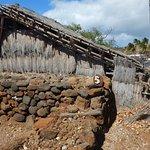 Lapakahi State Historical Park Foto