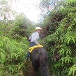 Silver Falls Ranch Greg Instructing