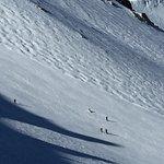 Photo of Mammoth Mountain