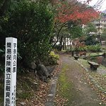 Photo de 1073802