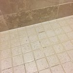 moldy grout