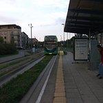 Bilde fra 1478663