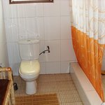 Shower and Toilet African Room