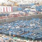 Plenty of fishing boats...................