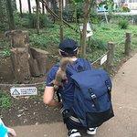 Inokashira Park Zoo